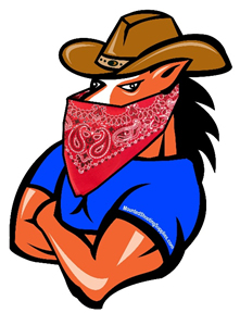 50 Great Cowboy/Cowgirl Coverup for a Masks
